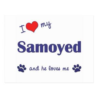 私は愛します私のSamoyed (オス犬)を ポストカード
