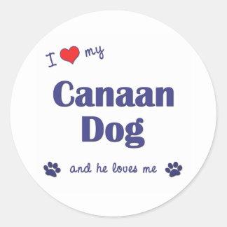 私は愛しますCanaan私の犬(オス犬)を ラウンドシール