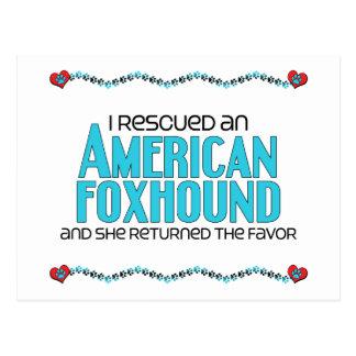 私は救助しましたアメリカFoxhound (メス犬)を ポストカード