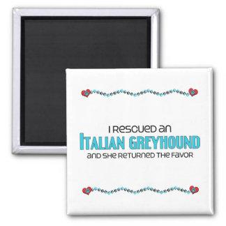 私は救助しましたイタリアン・グレーハウンド(メス犬)を マグネット
