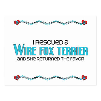 私は救助しましたワイヤーフォックステリア犬(メス犬)を ポストカード