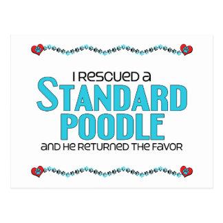 私は救助しました標準プードル(オス犬)を ポストカード