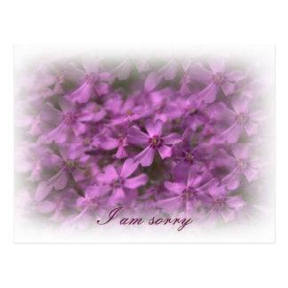 私は残念-夢みるようなピンクの花です ポストカード