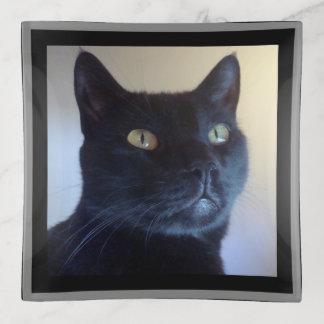 私は猫です トリンケットトレー