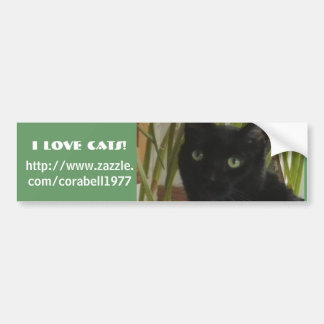 私は猫を愛します! バンパーステッカー