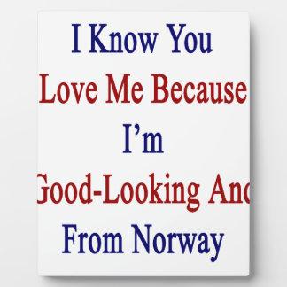 私は私が格好良く、Frであるので私を愛することを認知しています フォトプラーク