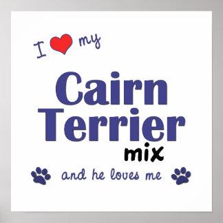 私は私のケアーン・テリアの組合せ(オス犬)ポスターを愛します ポスター