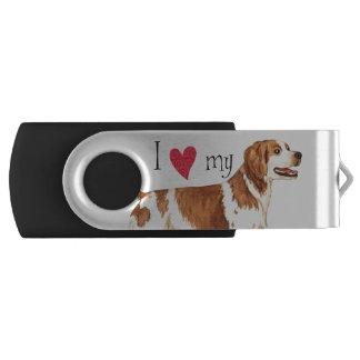 私は私のブリッタニーを愛します USBフラッシュドライブ