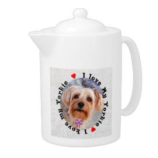私は私のヨークシャーテリアのメスのヨークシャテリア犬を愛します
