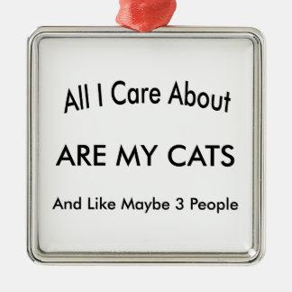 私は私の猫について気になります シルバーカラー正方形オーナメント