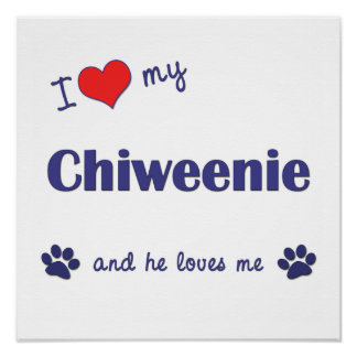 私は私のChiweenie (オス犬)ポスタープリントを愛します ポスター