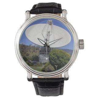 私は腕時計を信じます! 腕時計