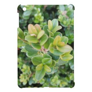 私は葉および植物との小型場合にパッドを入れます iPad MINI CASE