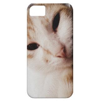 私は5/5S猫の例に電話をかけます iPhone SE/5/5s ケース