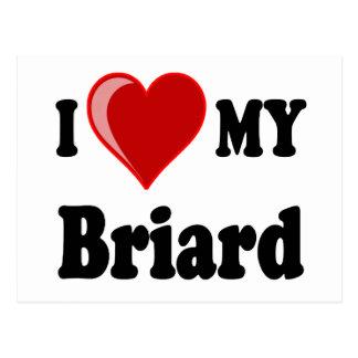 私は(ハート) Briard私の犬を愛します ポストカード