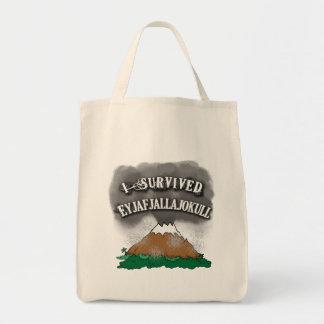 私はEyjafjallajokullのTシャツ、マグ、帽子を生き延びました トートバッグ