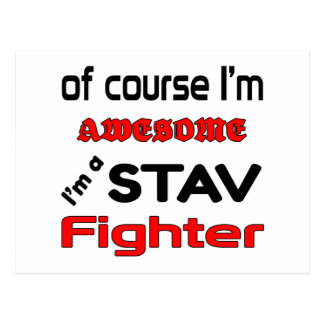 私はStavの戦闘機です ポストカード