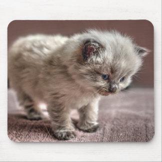 私をマウスを持つことを許可して下さいか。 マウスパッド