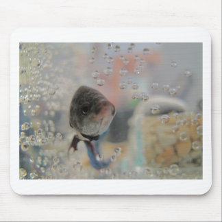 私を見ているBettaのエキゾチックな魚 マウスパッド