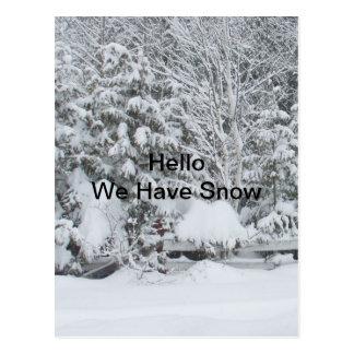 私達に塀および木で積まれる雪雪があります ポストカード