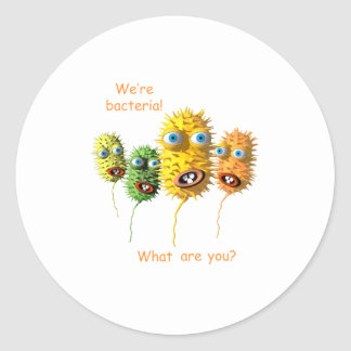 私達は細菌です ラウンドシール