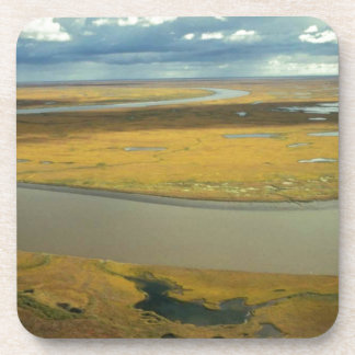 秋に金回るツンドラの空中写真 コースター