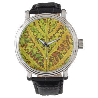 秋のつる植物の葉の質パターン植物の自然のorga 腕時計