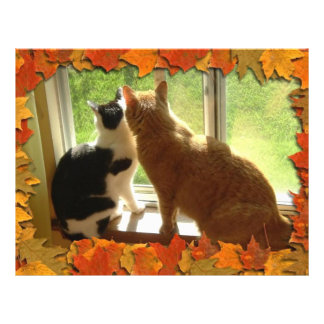 秋のオレンジ虎猫猫 チラシ