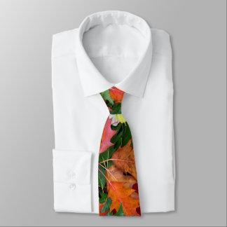 秋のカシのかえでの葉のプリントのためのタイ ネクタイ