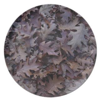秋のカシの葉 プレート