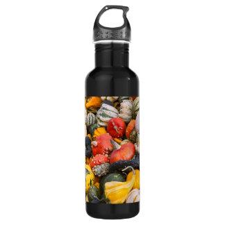 秋のカボチャ、ひょうたんおよび南瓜 ウォーターボトル