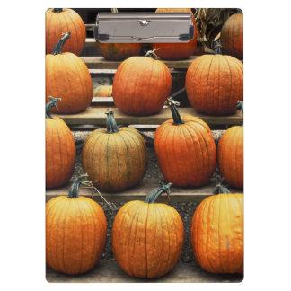 秋のカボチャ クリップボード