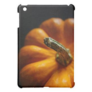 秋のカボチャ iPad MINI カバー