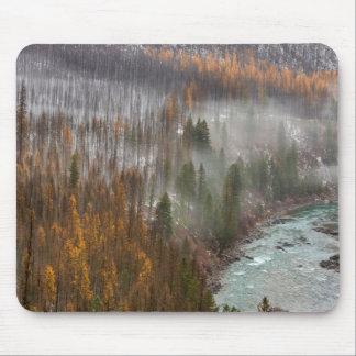秋のカラマツ木の霧ロール マウスパッド