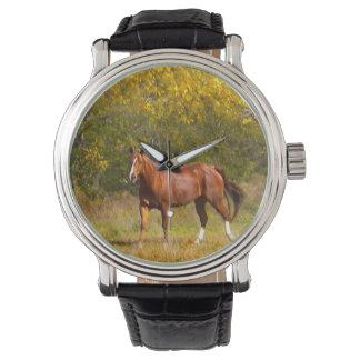 秋のクリの馬 腕時計