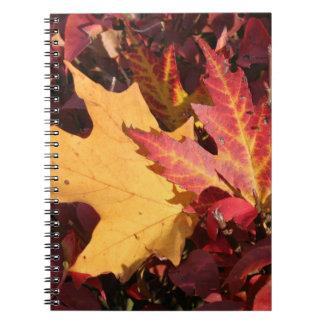 秋のコントラスト ノートブック