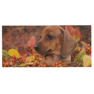 秋のダックスフントの子犬 ウッドUSBフラッシュドライブ