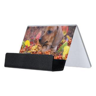 秋のダックスフントの子犬 デスク名刺ホルダー