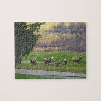 秋のパズルで牧草を食べること ジグソーパズル