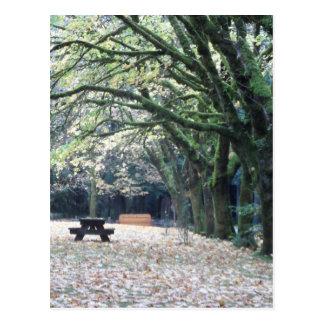 秋のピクニック ポストカード