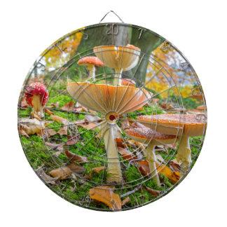 秋のベニテングタケそして葉が付いている森林床 ダーツボード