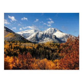 秋のユタ山の山Timpanogos 葉書き