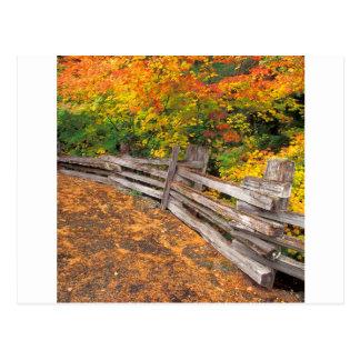 秋の割れた柵レーニア山 ポストカード