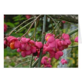 秋の印象2010年(ピンクの花) カード