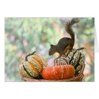 秋の収穫のリス カード