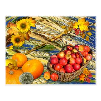 秋の収穫の~の郵便はがき ポストカード