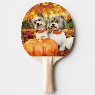 秋の感謝祭-最高及びレオ-ヨークシャーテリア 卓球ラケット