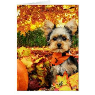 秋の感謝祭-最高-ヨークシャーテリア カード