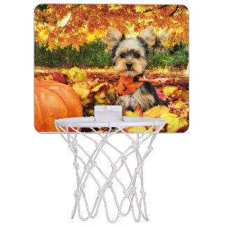 秋の感謝祭-最高-ヨークシャーテリア ミニバスケットボールゴール