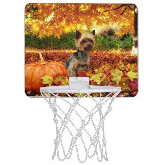 秋の感謝祭- Tucker -ヨークシャーテリア ミニバスケットボールゴール